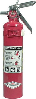 ALLSTAR PERFORMANCE Fire Extinguisher 2.5lb Red 10500